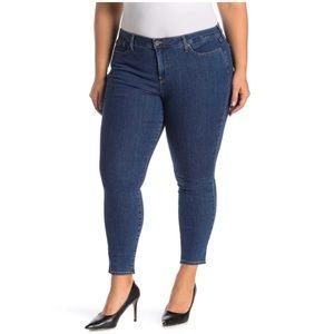 NYDJ AMI Skinny Legging Jeans Plus Size Petite